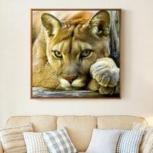 Meian,DIY hayvan aslan boyama, nakış, tam beyaz İğne, çapraz dikiş, kitleri, 14CT çapraz dikiş, setleri nakış, VS 41