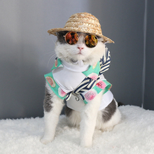 Fashion Glasses Pet Dog and Cat Glasses