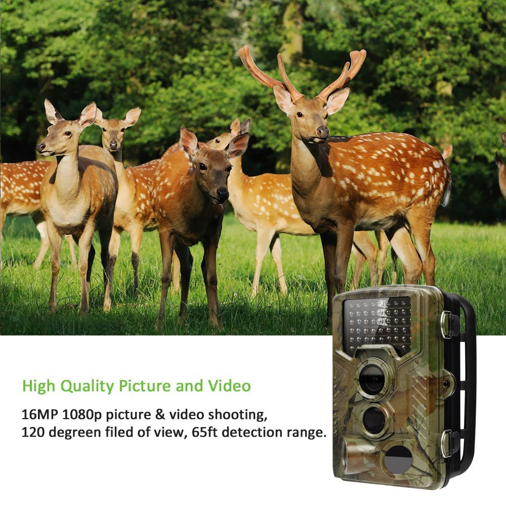16MP Hunting Trail Camera 1080P HD With Time Lapse 65ft 120 Wide Angle Infrared Night Vision 46pcs IR LEDs 2.4 LCD Screen