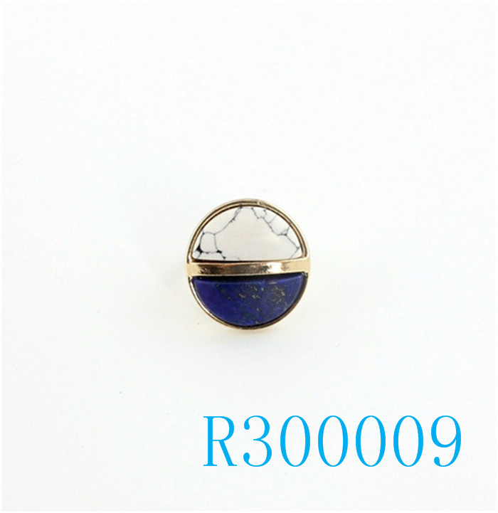 R300009