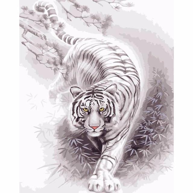 4050 Cm Gambar Berbingkai Lukisan Harimau Dengan Angka Hewan