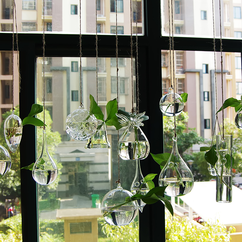 Διαφανές γυάλινο βάζο υδροπονικό στο μπουκάλι διακόσμησης στο σπίτι μπουκάλι διακόσμησης μπουκαλιών μπουκαλιών