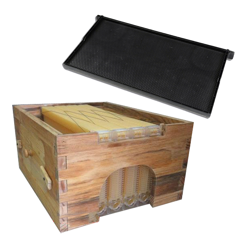 Free ship smart automatic beehive honey flow hive for honey bee hive honeycomb 4 frames beehive 20 one type plastic frames new design honey self flowing wood bee hive with frames