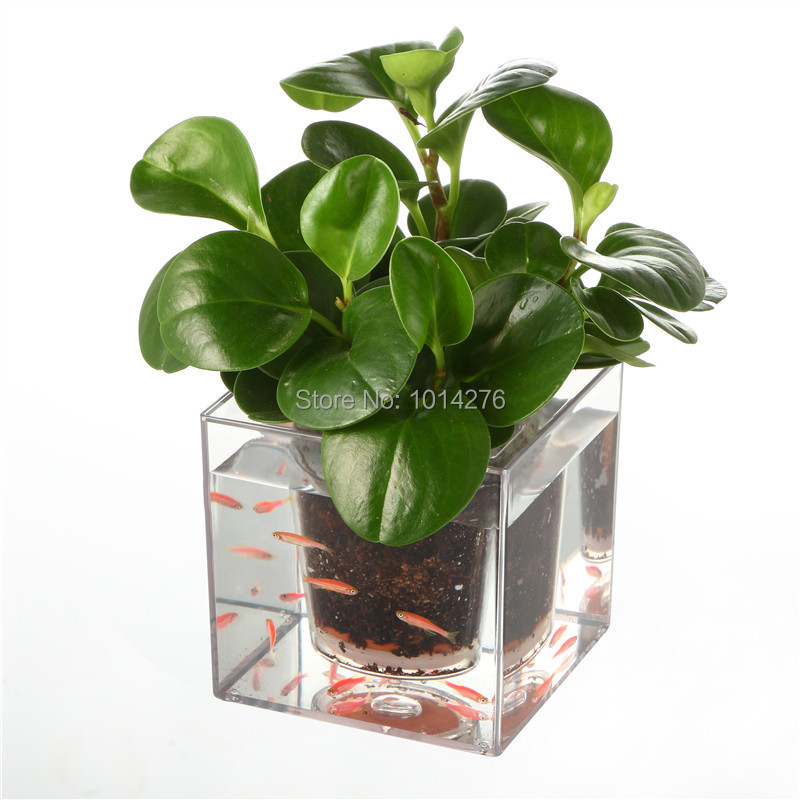 creative clear tube plant pot flower pot decorative self watering planter fish tank for - Decorative Planters