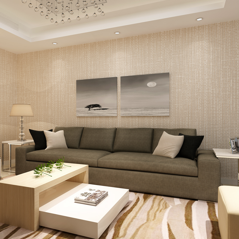 Moderne Eenvoudige Luxe Interieur Gevlokt Plaid Geweven Gestreepte ...
