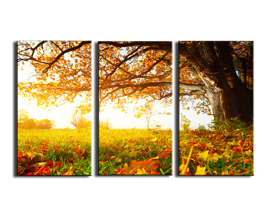 2016 Limited New Oil Painting 3 Panels Autumn Trees Painting Canvas ...