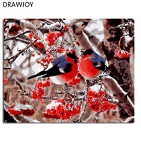Morden Frameless Pictures Of Bird And Flower DIY Painting By Numbers Home Decor For Living Room