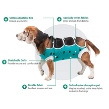 HELLOMOON New Arrival dog clothes Post Operative Protection Shirt for Dogs after surgery pet clothing