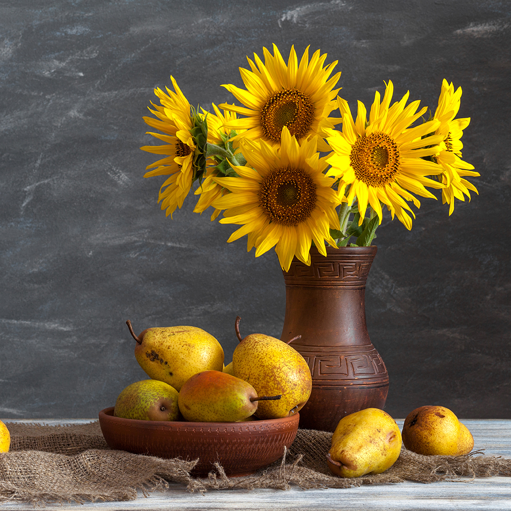 3 PCS Still Life Sunflowers Paintings For The Kitchen Fruit Wall ...