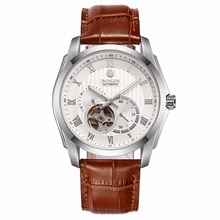 BINLUN Men's 21 Jewel Mechanic Movement Watch Brown Leather Straps Automatic Watches for Mens