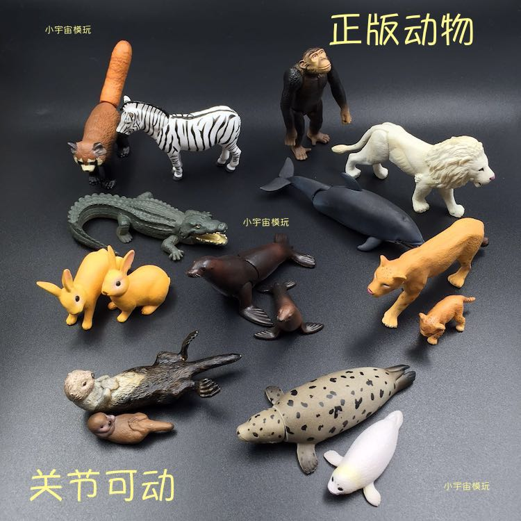 Pvc figure Simulation animaux modèles animaux sauvages animaux 16 pièces/ensemble - 1