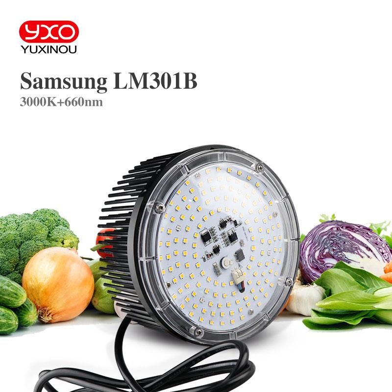 Super Bright 100W AC 220V Led Grow Light Quantum Board Full Spectrum Samsung LM301B SK 3000K 660nm For Indoor Plant Veg Flower