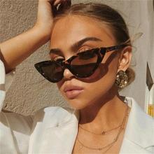 Gafas de sol cat eye shade para mujer a la moda marca mujer retro triangular cateye gafas oculos feminino gafas de sol Sexy