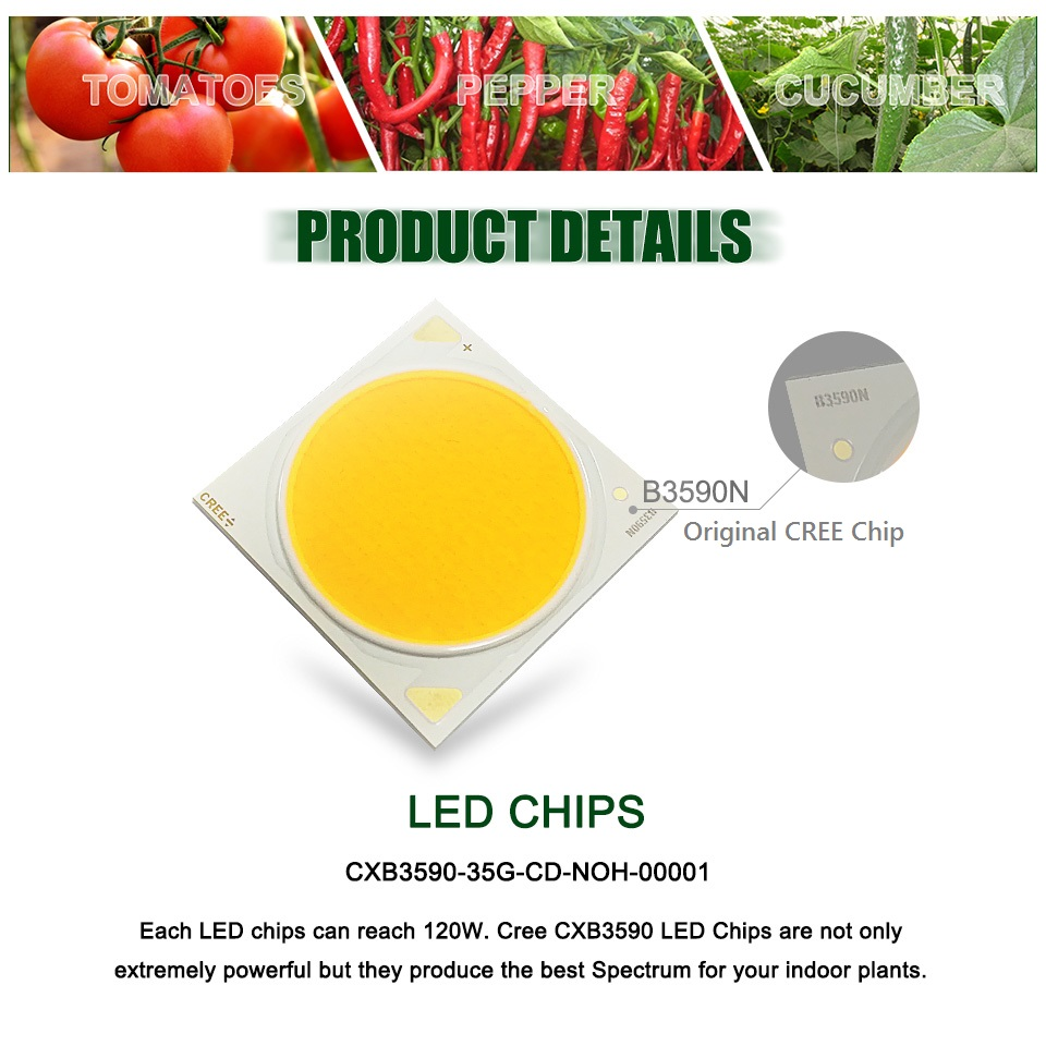 Image 5 - Greenhouse Hydroponics LED Grow Light 100W 200W 600W Cree CXB3590 Full Spectrum Indoor Growing Lamp for Garden Tent Plant GrowthLED Grow Lights   -