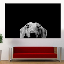 Large Size Dachshund Canvas Print