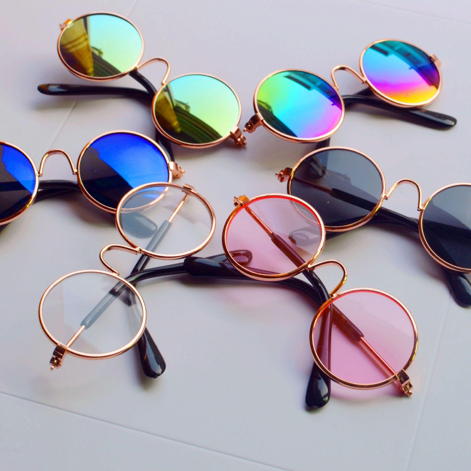 Trendy eyeglasses for dog