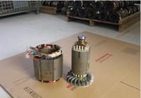 Fast Shipping 6 5kW 220V 50Hz Single Phase Rotor Stator Gasoline Generator Diesel Generator Suit For
