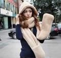 2017 Осенью и зимой freeshipping Шерсть любителей кепка с шарф перчатки hat Женская мода зима аксессуары