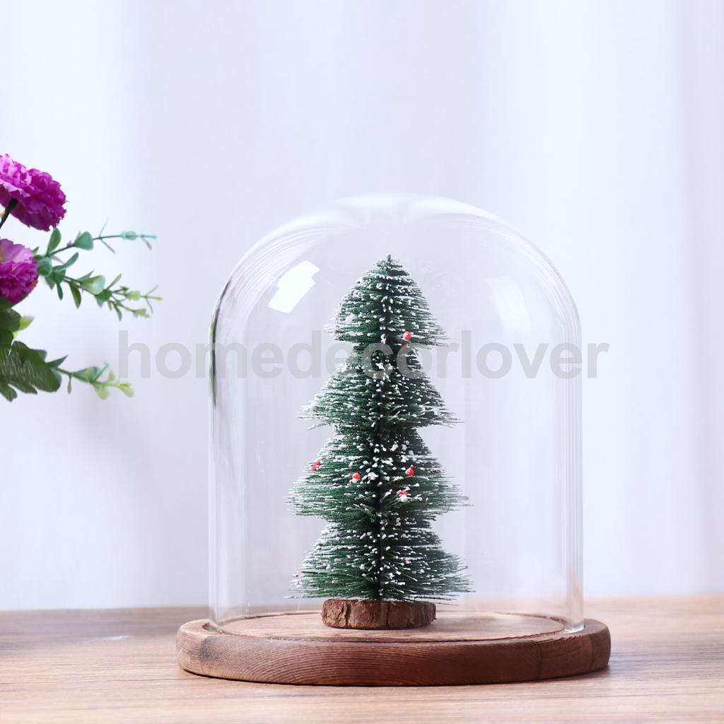 Clair En Forme de Boule En Verre Fleur Vase Pot Terrarium Décoratif Bouteille 10 Pcs