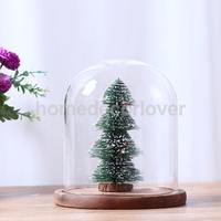 Clear Ball Shaped Glass Flower Vase Pot Terrarium Decorative Bottle 10Pcs