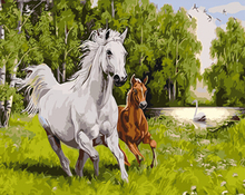 "DIY Painting By Number – Horses (16""x20"" / 40x50cm)"