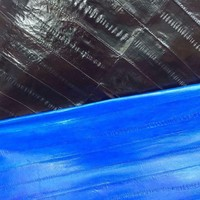 Fashion Quality Genuine Eel Skin Leather Piece 150cm*60cm for Garment /Wallet/ Purse,Free Shipping