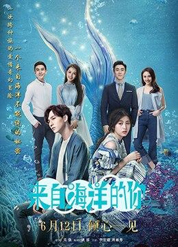《来自海洋的你》2018年中国大陆剧情,爱情电视剧在线观看