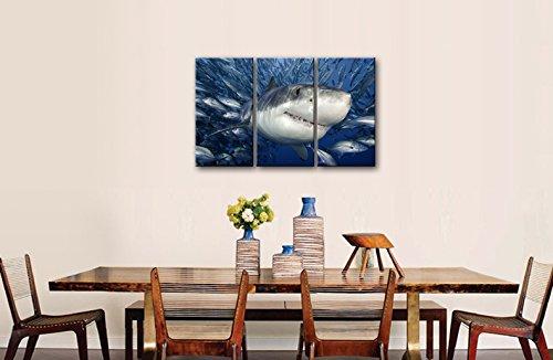 3 panneau bleu mur Art peinture requin attraper poissons photos impressions sur toile Animal l'image décor à la maison livraison directe