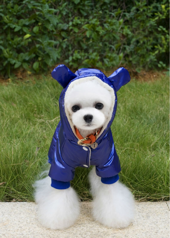 Y122_New_arrival_Winter_Pet_Dog_Cotton_Clothes_Super_warm_Puppy_dog_Four_Legs_Ski_suit_Costume_Clothes_Chihuahua_1 (2)