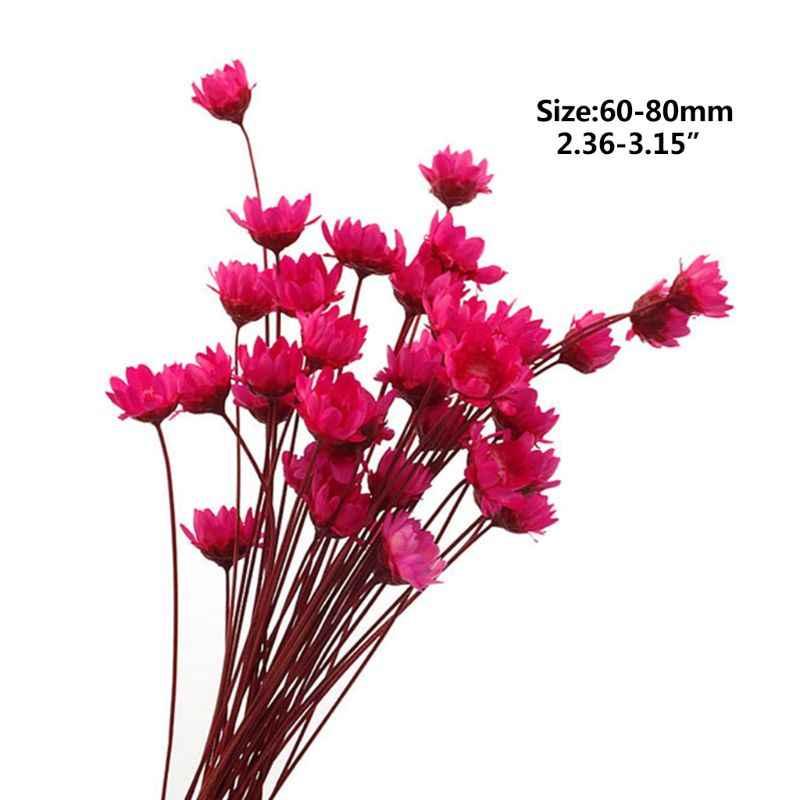 Caixa de Enchimento 1 Flor Seca Flores Feitas À Mão DIY Artesanato Moldes De Silicone Ferramentas de Preenchimento de Resina Epóxi UV Cristal Acessórios de Decoração