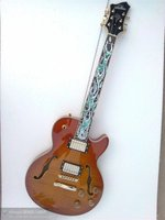 China's OEM firehawk guitar electric guitar