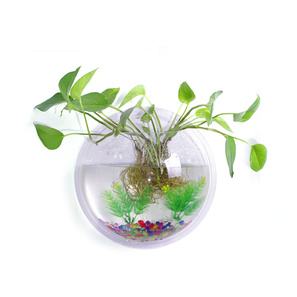 23cm diameter clear acrylic round wall mount hanging fish for Wall mount fish bowl