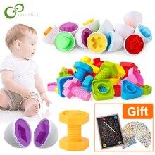 11 шт. Обучающие математические игрушки Монтессори умные яйца/пластиковые винты 3D игра-головоломка для маленьких детей развивающие игрушки GYH