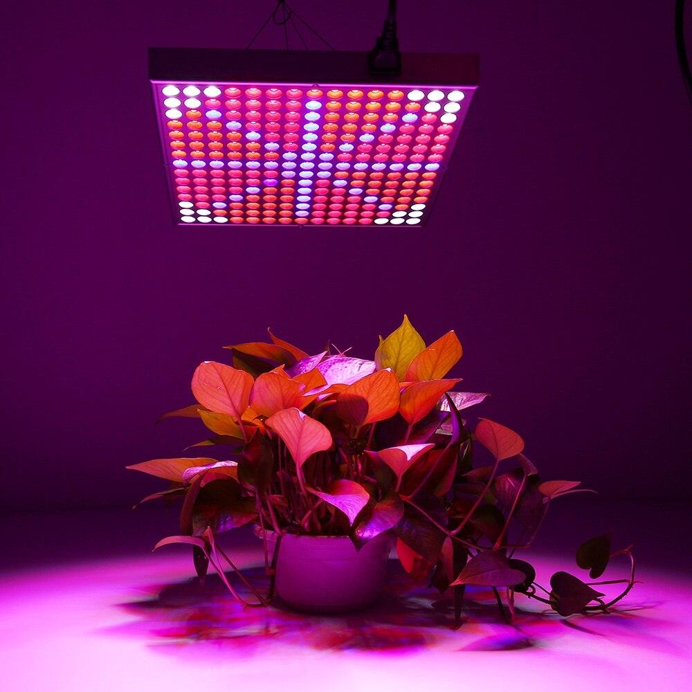 Commercial Greenhouse Led Grow Lights: BREFILI LED Grow Light 300W Full Spectrum 110V/220V Grow