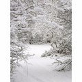 3X5FT Photography Background Winter Snow For Studio Photo Props Vinyl Photographic Backdrops 90x 150cm waterproof