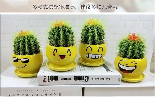 decorative plants for office. Cactus Ball Pots Office Radiation Room Living Bedroom Clean Air Desktop Green Plants Decorative Decoration For