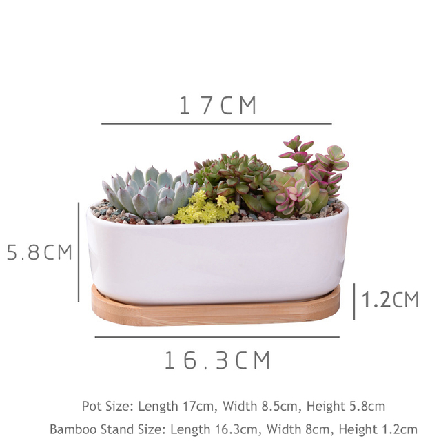 1 Set Minimalist White Ceramic Succulent Plant Pot Porcelain Planter Decorative Desktop Flower Pot Home Decor(1 Pot + 1 Tray)