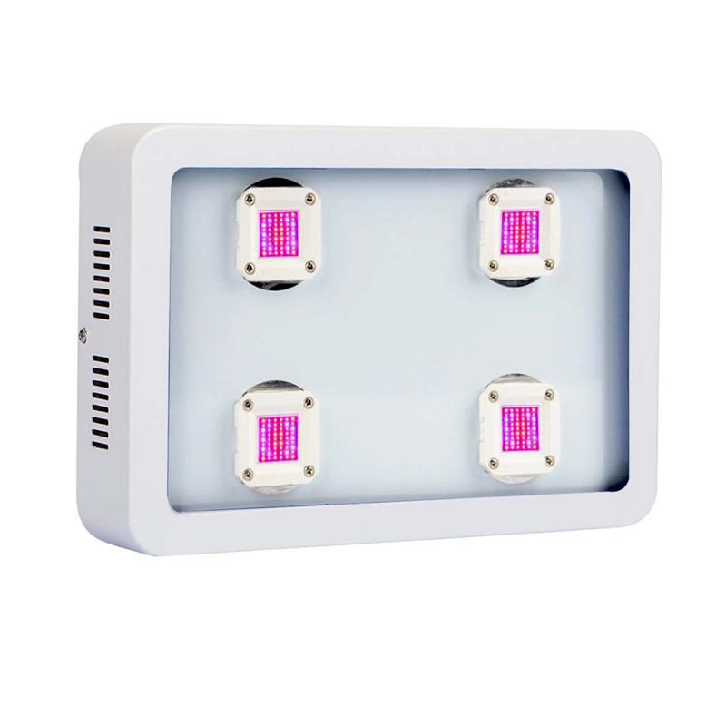 Worldwide delivery 800w cob led grow light in Adapter Of NaBaRa