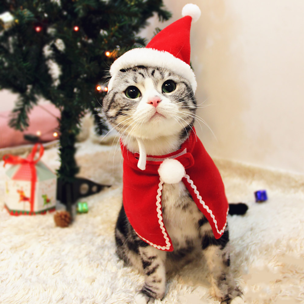 Cat Christmas.Us 2 77 50 Off Christmas Cloak For Cats Red Xmas Suit For Dogs Cat Accessories Small Cloak For Kittens Halloween Dog Costume Pet Supplies S M L In