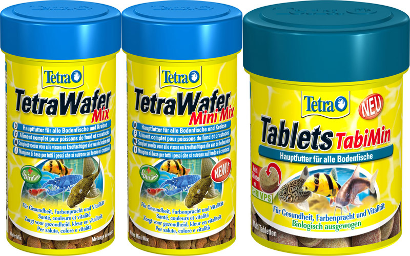 Tetra tablets pleco bottom fish tabimin suckermouth for Bottom feeder fish list