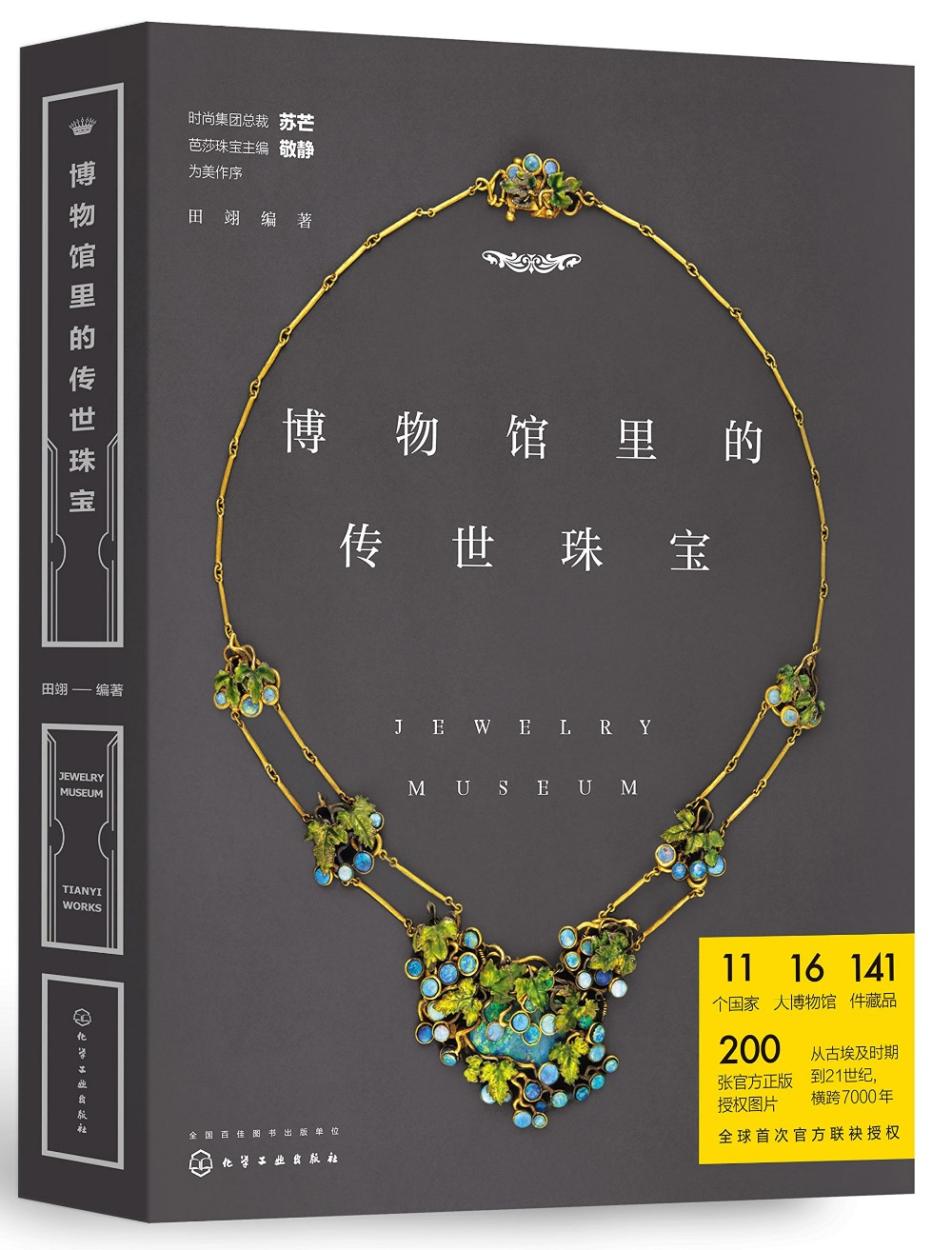 Heritage Jewelry In Museum Jewelry Design Enthusiasts Reference Appreciation Drawing Painting Book In Chinese