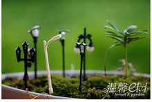 My Neighbor Totoro Micro Landscape Furnishing Model Lamp Moss Succulent Plant Creative Furnishings Miniature Garden Decoration micro landscape plant moss fresh moss natural growth mini ecological bottle accessories material