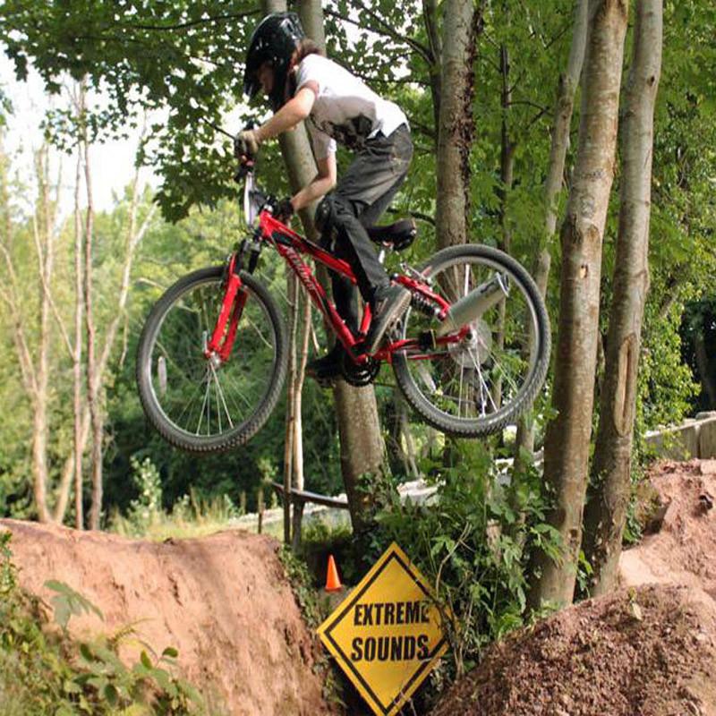 bike-paiqi-3