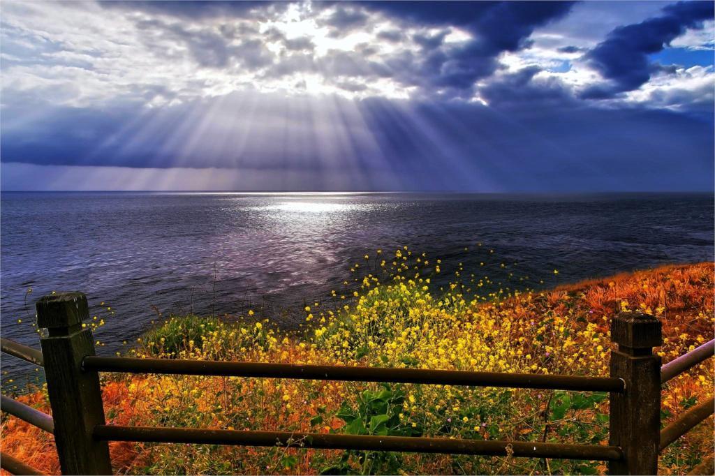 https://ae01.alicdn.com/kf/HTB1Q5FqLXXXXXXvXpXXq6xXFXXXz/Living-room-home-wall-decoration-fabric-poster-coastal-nature-landscapes-wildflowers-sun-font-b-rays-b.jpg