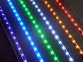 Mini LED waterproof 5 m SMD3528 60 PCS/per meter Warm white  white  Red, green and blue free shipping