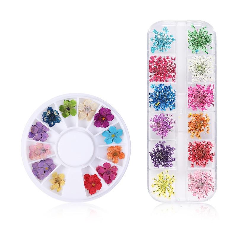1 коробка, 12 цветов, 24 шт., сушеный цветок гипфиила, 5 лепестков, сушеный цветок, круглая коробка и длинная коробка, аксессуары для ногтей