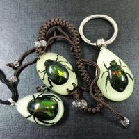 Livraison gratuite SET NEW réel vert BEETLE lueur dans l'obscurité LUCITE BRACELET pendentif trousseau