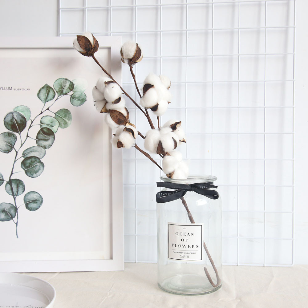 Natural Dried Flowers Cotton with Stem Crafts Home Wedding Living Room Decor