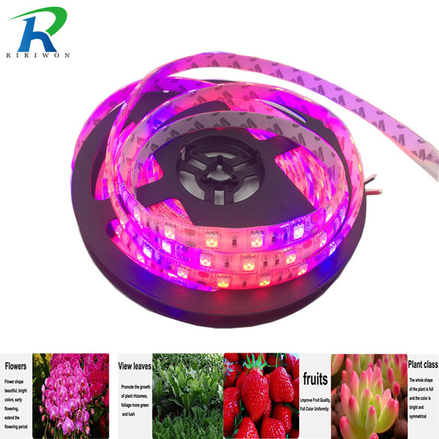 RiRi won 5m LED Plant Grow strip grow light Waterproof 5050 DC 12V Hydstems growing 60leds/m Full spectrum Aquarium Greenhouse