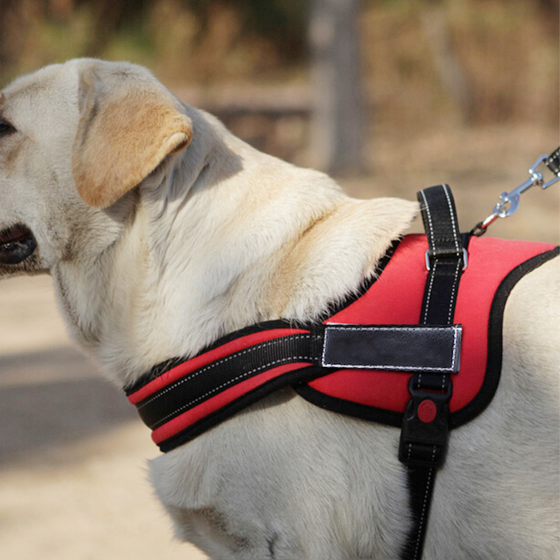 New Medium Large Dog Harness Nylon Vest With Handle Guide